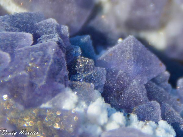 Fluorite (Fluorine) with Pyrite from Jiashan Copper Mine, Hubei Prov., China (size: Small cabinet)
