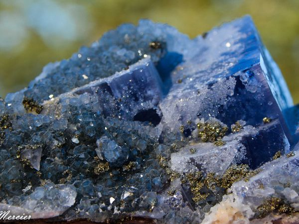 Fluorite with Quartz and Pyrite from Morocco (Maroc) (size: Cabinet)