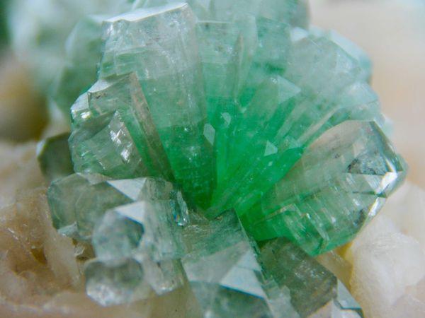 "Green Apophyllite on Stilbite ""Well Pocket 2001"" from Momin Akhada, Rahuri, Ahmadnagar Dist., Maharashtra, India (size: Cabinet)"