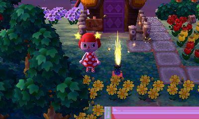 Les feux d'artifices.