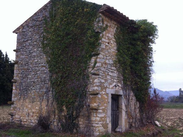 Celui ci, presque une petit maison à étage, au milieu d'un champs, le lierre pénètre de partout.