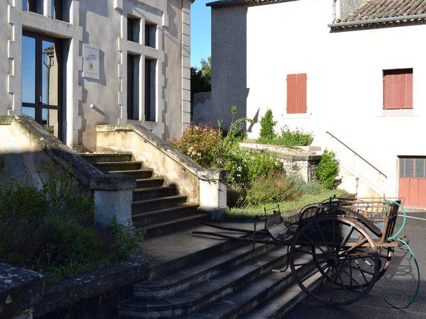 &quot&#x3B;L'Arbre De  Mai&quot&#x3B; à Monségur-Sur-Lauzon (Drôme 26)