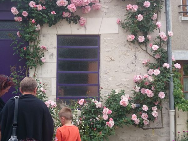 CLICK ON THE PICTURES TO SEE THEM FULLY - beautiful houses facades