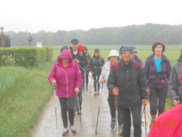 marche à Neuville lès Loeuilly : quelques photos