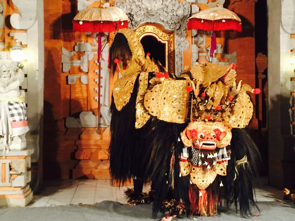 Barong, a holy animal living in the forest