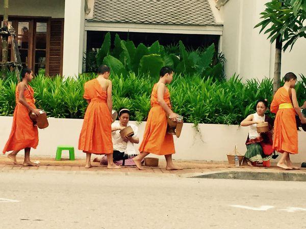 Cérémonie du tak bat dans les rues de Luang Prabang