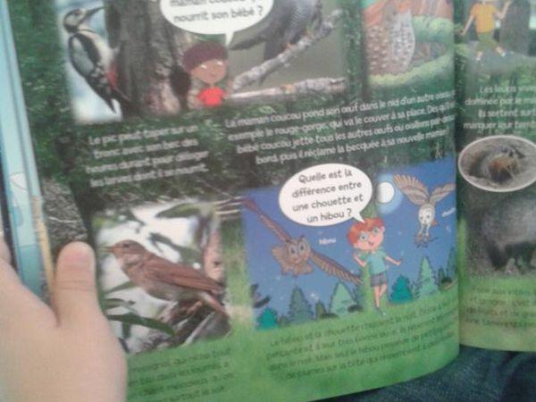 Zébulon a testé le livre &quot&#x3B; Les animaux &quot&#x3B; des éditions Fleurus !
