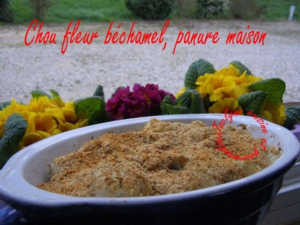 Chou fleur à la béchamel et panure maison, saveurs +++ :) Jaclyne cuisine et gourmandise