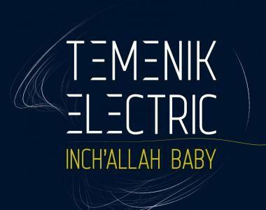 temenik electric, une âpreté rageuse, la verve insolente et gutturale de mehdi haddieri et ce gros son explosif