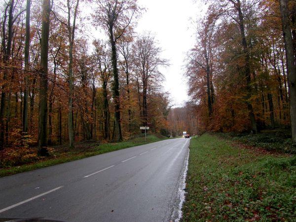 Forêt de Retz et Coucy le Château Auffrique