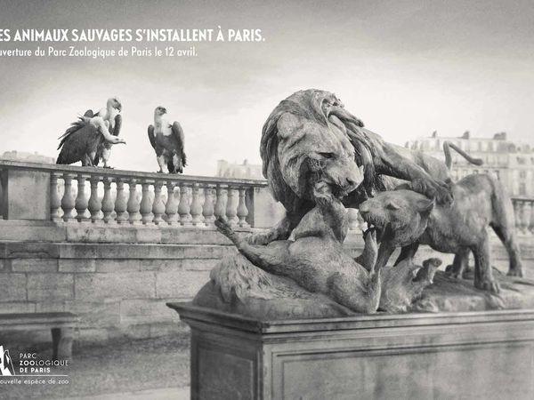 Quand les animaux sauvages débarquent à Paris...