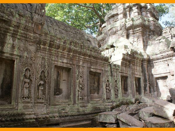 Angkor Est. Ta Prohm. Cambodge 2012.