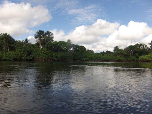 Voyage au fil de l'eau....... Naviguent les pirogues sur les fleuves guyanais......