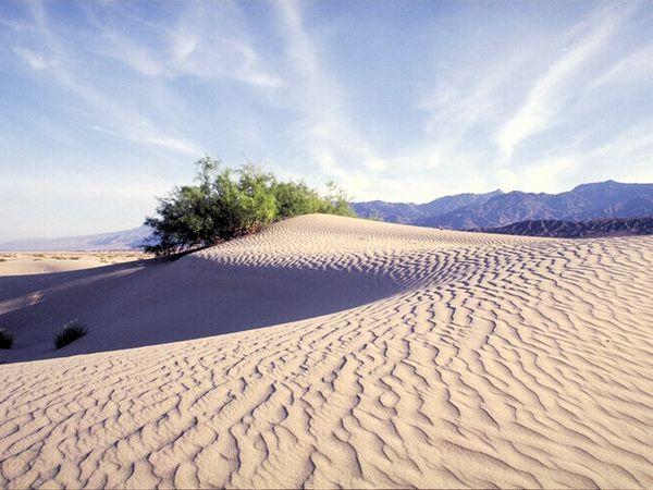 Paysages : Beauté du desert