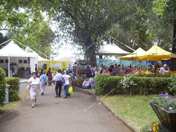 Ville du Tampon (Ile de la Réunion)