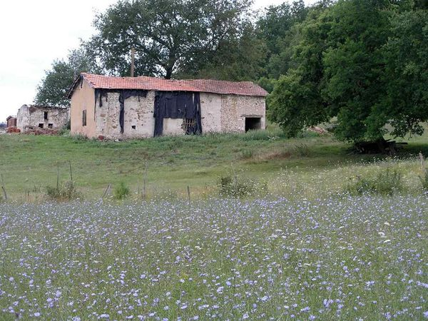 RANDONNÉE MONESTIER (Dordogne)