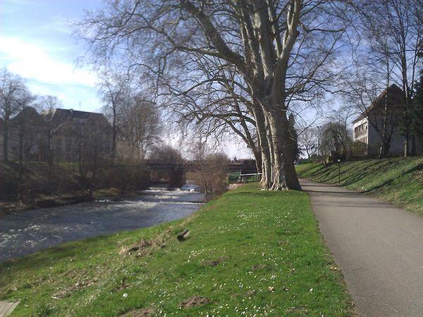 Rivière: La Moder
