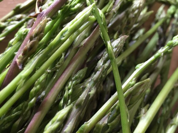 Brouillade d'asperges sauvages