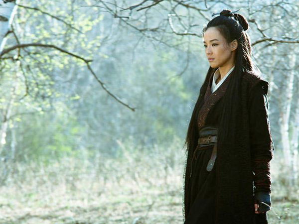 CRITIQUE: &quot&#x3B;THE ASSASSIN&quot&#x3B;