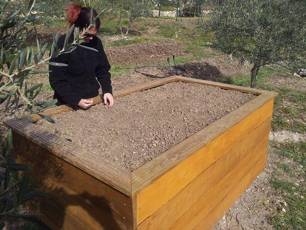 """Préparation du lit de plantation. une planche en bois et quelques morceaux de manche de pelle taillés en pointe et hop hop on se retrouve avec un plantoir """"intensif"""". y'a plus qu'a appuyer assez fort. 60 trous pour les oignons."""
