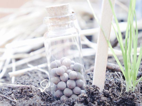 Test'Ours : La box de Cultiver son jardin.fr