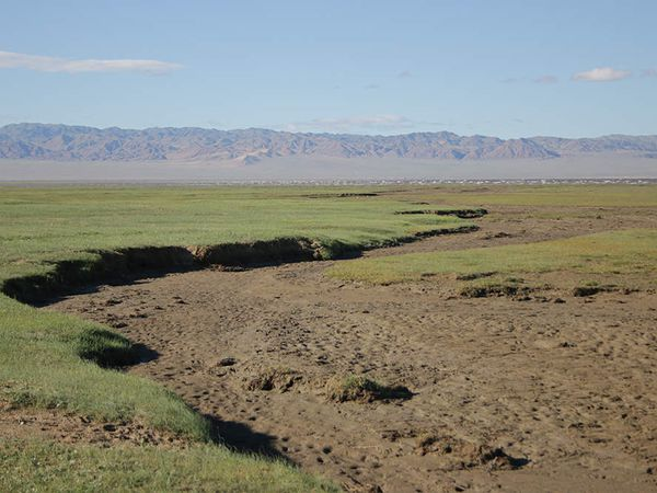 Le lac Boon Tsagaan est un haut lieu de l'ornithologie mongole et Pierre semble décidé à l'explorer !