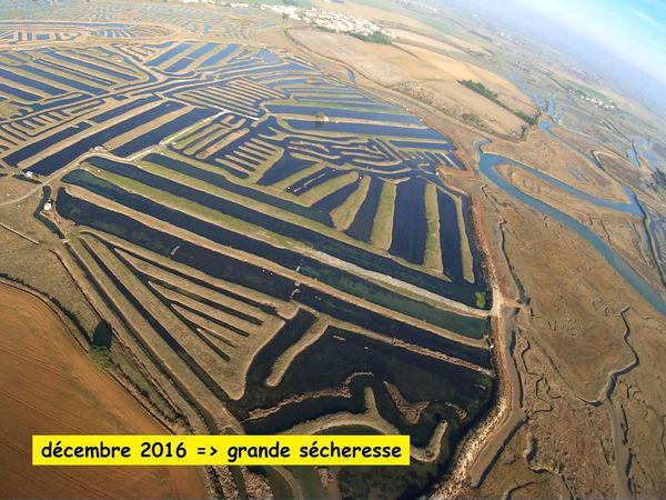 Sécheresse dans les marais Benest La Guittière / Talmont Saint Hilaire (photos aérienne)