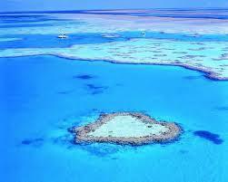 Qq photos de La Grande Barrière de Corail...