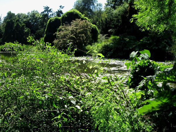 Parc de Bagatelle (Neuilly)