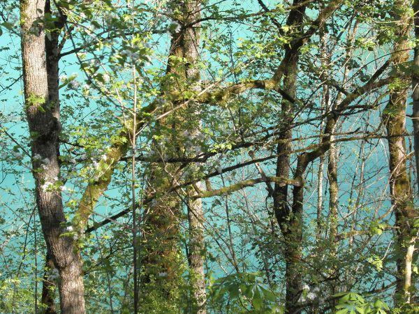 L'entrée du chârteau et l'eau turquoise du lac en contrebas ! On y va ?