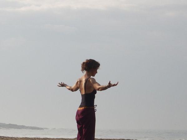 Ayurveda, yoga, kalarippayat : voyage vers la tradition indienne