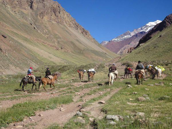 Derniers paysages avant 4h de bus et le retour à Mendoza.