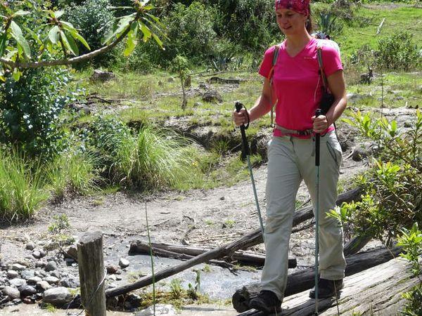 Passage délicat du Rio Toachi sur un tronc d'arbre