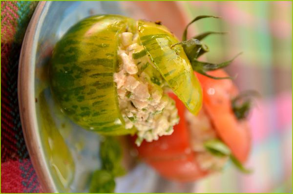 Tomates farcies au Cottage-Cheese