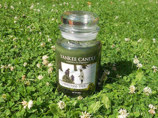 Yankee Candle !!!