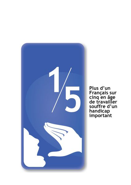 Le cri de novembre 2013: le handicap en France