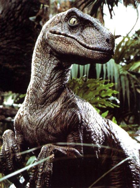 Velociraptor escapes