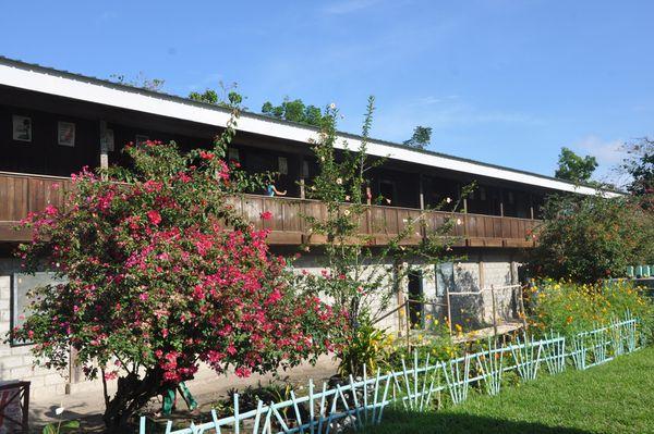 Les jardins de l'école aux Philippines