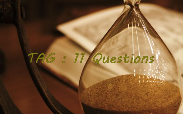 TAG : 11 questions