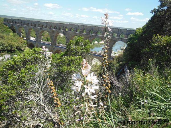 III. Le Pont du Gard par le GR6 jusqu'à Sernhac, VTT.