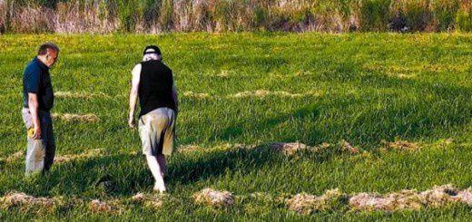 Trace au sol ovni en Argentine