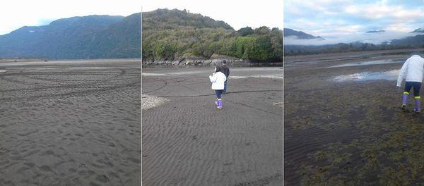 Photos : lac Riesco, au Chili... Où est passée l'eau ?...