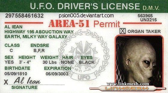 Les Aliens Mutilateurs de Bétail en activités au 37ème Parallèle