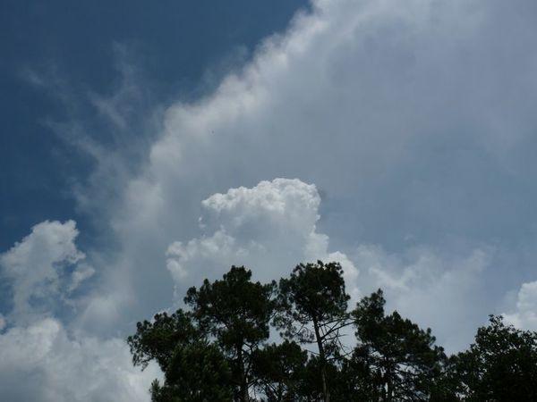 Ciel d'orage sur les Landes de Gascogne