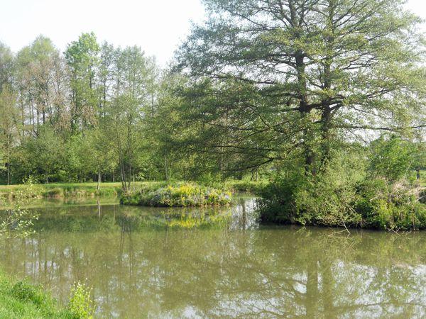 étangs de Osnes Ardennes