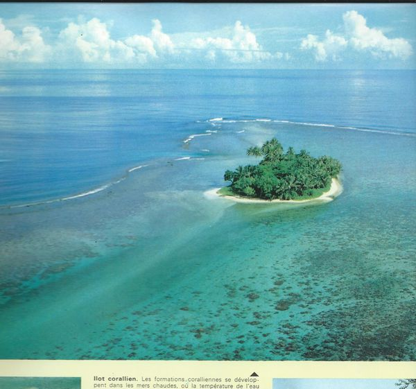 île coralienne