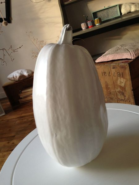 Courge blanche...