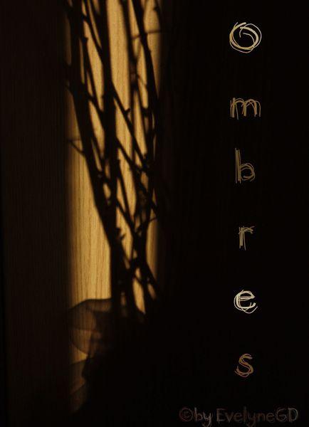 Ombres et Lumière..