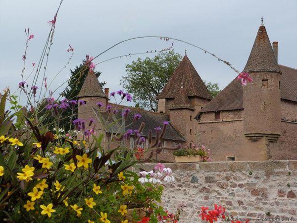 Un château et des fleurs.