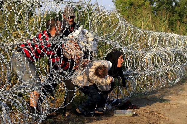 Hungario : 367 rifuĝintoj perforte arestitaj pro kontraŭleĝa transiro de la landlimo